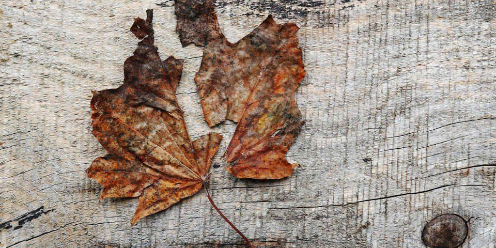 Combating Seasonal Affective Disorder